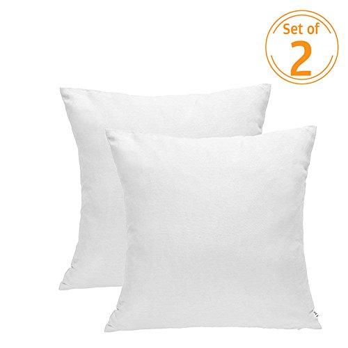 DOZZZ Set of 2 Premium Hypoallergenic Stuffer Pillow Insert Sham Square Form Cushion Polyester, 18