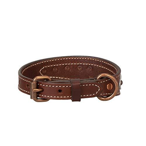Weaver Pet Patina Rose Dog Collar