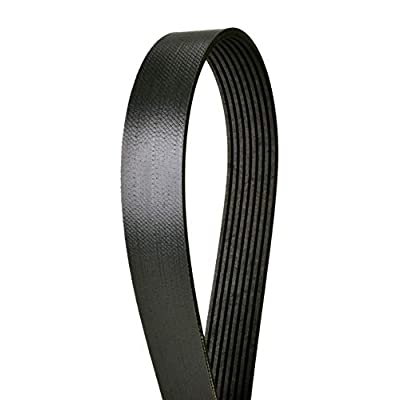 "Continental 4080565 8-rib, 56.5"" Multi-V/Serpentine belt: Automotive"