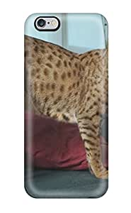 Popular GregoryJustinStearns New Style Durable Iphone 6 Plus Case (kJZETth623vBJaW)