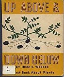 Up above and down Below, Irma E. Webber, 0201093839