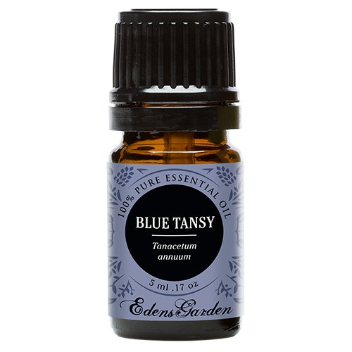 Edens Garden Blue Tansy Essential Oil, 100% Pure Therapeutic Grade (Highest Quality Aromatherapy Oils- Allergies & Inflammation), 5 ml (Essential Tansy Blue Oil)