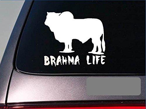 Yards Stock - Brahma Life *E239* sticker decal cattle brahman texas beef hamburger stock yard