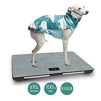 Image of 26''L x 18''W Veterinary Scale | Big Dog Weight Scale | Pet Digital Weighing Scale | Large Platform Vet Dog | KG/LB/LB:OZ Switchable Body Weight Scales
