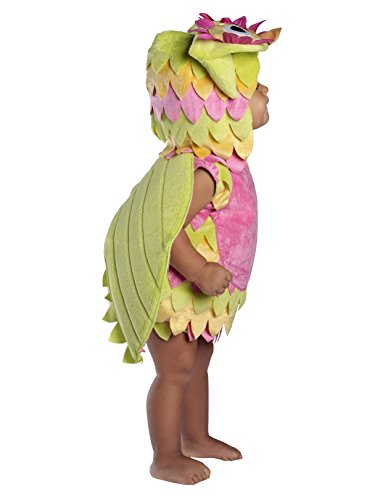 Princess Paradise Baby's Holly The Owl Deluxe Costume, As Shown, -