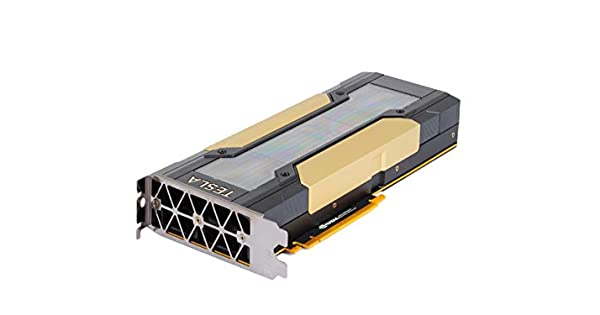 Amazon.com: Tarjeta gráfica NVIDIA Tesla V100 Volta GPU ...