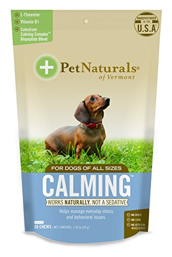 Pet Naturals of Vermont - Calming for Dogs, Natural Behavior Support for Stress Inducing Events, 30 Bite-Sized Chews Includes Naturally Sourced Anxiety Calming Ingredients (Best Natural Calming Remedies)