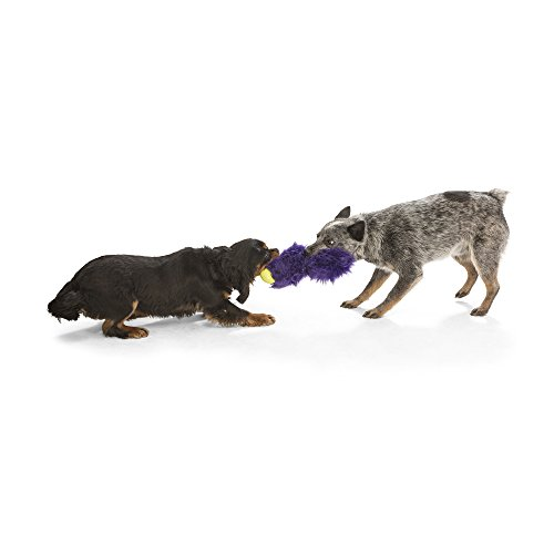 Image of West Paw Rowdies with HardyTex and Zogoflex, Durable Plush Dog Toy for Medium to Large Dogs, Sanders, Purple Fur