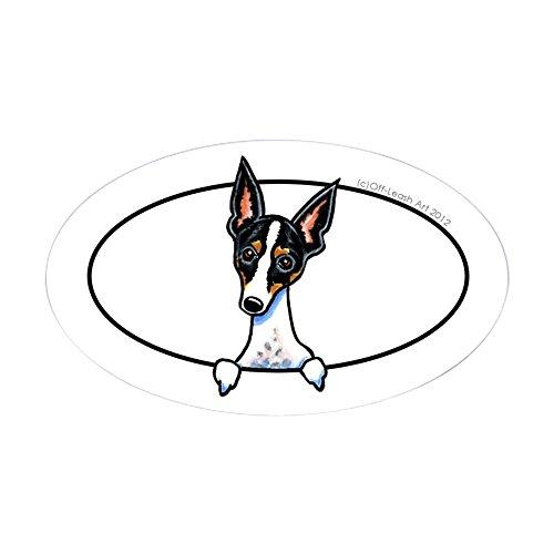 CafePress Rat Terrier Peeking Bumper Sticker Oval Bumper Sticker, Euro Oval Car -