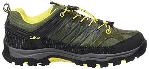 Avocado Unisex cedro Rigel CMP Adulto Verde antracite Rise High Zapatos de Senderismo 6zwTq1z