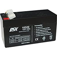 DSK 10322 - Batería Plomo Acido 12V 1,3