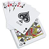 KOVOT Waterproof Playing Cards in Plastic Case – Great For Pool And Water Games