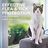 Seresto Flea and Tick Prevention for