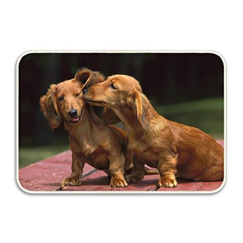 (Custom Animal Dachshund Dogs Doormat Door Welcome Mat Rug Cover Sign Outdoor Indoor Floor Mats Non-Slip)