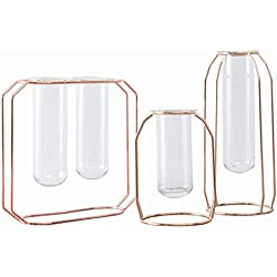 Terrarium - Nordic Glass Cuvette Vase Modern Gold Plated Iron Flower Fashion Plant Creative Terrarium Room Home - Tweezers Insect Pump Outlet Liner Grow Fogger Atures Hanging Office Round Gau