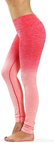 Prolific Health Fitness Power Flex Yoga Pants Leggings – All Colors – XS – XL (XXL (US Size 18-20), Ombre Coral Plus Size)