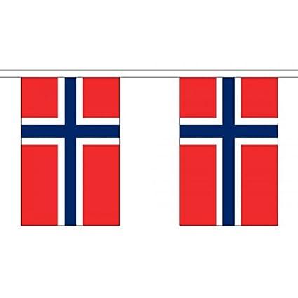 3 metros 10 (22,86 cm x 15,24 cm) noruegos de la bandera de ...