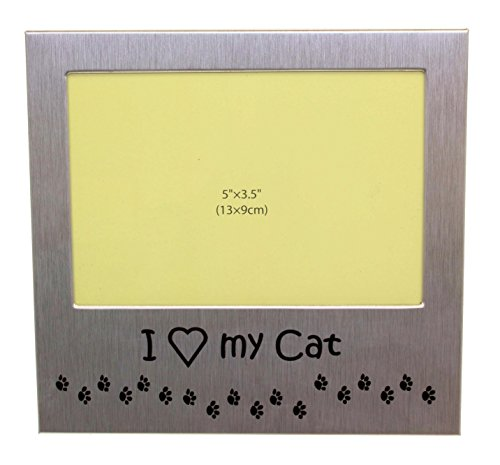 I Love My Cat - Photo Picture Frame Gift - Will take a photo of 5 x 3.5 Inches (13 x 9 cm) - Brushed Aluminum Satin Silver Color.