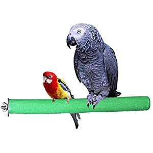 KINTOR Bird Perch Rough-surfaced Nature Wood Stand Toy Branch for Parrots Green 32