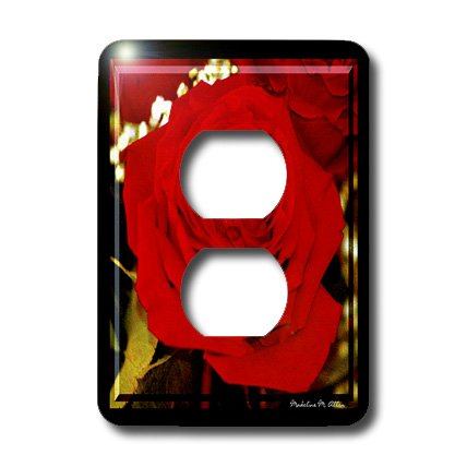 lsp_6658_6 SmudgeArt Flower Art Designs - Sweetheart Rose - Photography Flowers - Light Switch Covers - 2 plug outlet cover