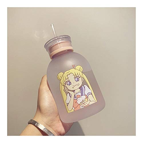HONGTAI Sailor Moon Transparent Plastic water Bottle Cartoon Frosted water Bottles Leak-proof Drinkware Cute Student Girl Gift Cup (Color : 7, Size : 500ml)