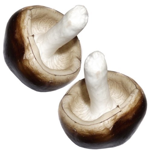 2 Artificial Mushrooms - Plastic Decorative Vegetables