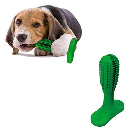 SC Dog Toothbrush, Chew Toys,Chewing is Equivalent to Cleaning Teeth. Suitable for Small and Medium Dogs Under 40 pounds…