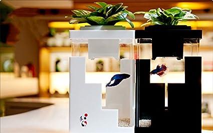 Yi 5 Aquaponics System Home Office Decor Interior Design Indoor Farming Eco  Betta Tropical Aquari Fish