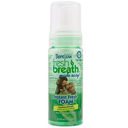 (TropiClean Fresh Breath Instant Foam All Natural Dental Care Cats Dogs Mint 4.5z )