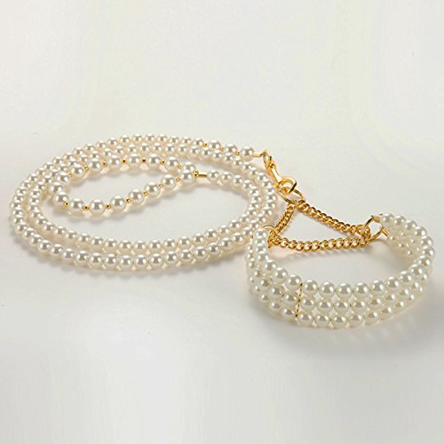 Wire Spray Collar Necklace (Neonr Noble Fashion Classic high-end White Pearl Suit Chain for Pet to Lead(White))