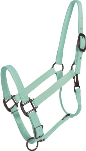 Pastel Mint - Pastel Mint Green Horse Halter - USA Made (horse)
