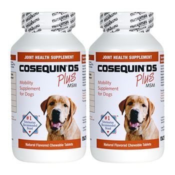 Cosequin® DS Plus MSM 360 Count Joint Health Supplement for Dogs Twin Pack (2 x 180 tablets) Chewable Tablets (Dogs Tablets 180)