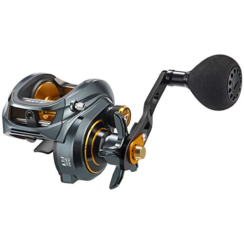Piscifun Alijos Size 300 Baitcasting Reels Low Profile Baitcaster Aluminum Frame Baitcast Fishing Reel, 33lb Drag 8.1:1 Gear Ratio Freshwater Saltwater Power Handle Casting Reels (Left Handed) (The Best Casting Reel)