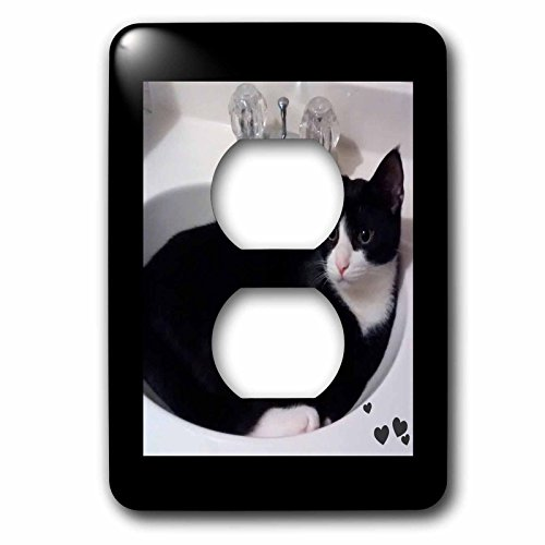 Charlyn Woodruff - CW Designs - Cat Photography - Cute Cat Lovers Black White Tux Cat Curled up in Sink - Light Switch Covers - 2 plug outlet cover (lsp_242427_6) by 3dRose