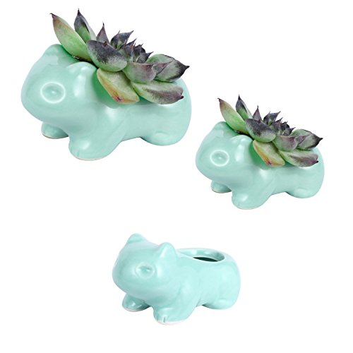 DOYOLLA Bulbasaur Succulent Planter Funny Aminal Flower Pots Flower Vases Mixed Sizes Set of 3