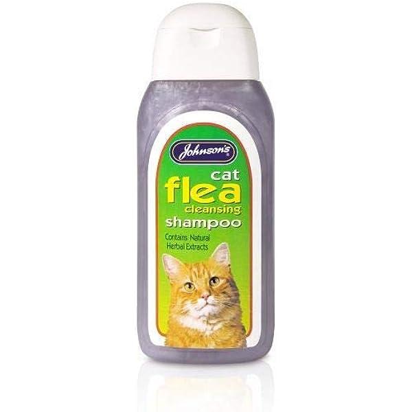 Johnsons Veterinario Gato pulgas Champú de Limpieza, 125 ml: Amazon.es: Productos para mascotas