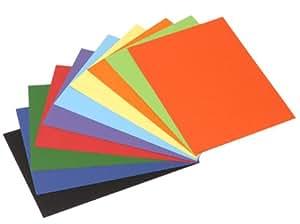 Rainex 105 AS - Paquete de 200 folios A4 (200 g, 10 colores variados)