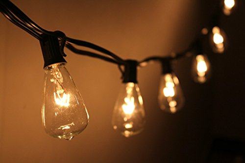 Fantado 10 Socket Outdoor Patio String Light Set, S38 Clear Bulbs, 10 FT Black Cord w/ E12 C7 Base by PaperLanternStore (Socket String)