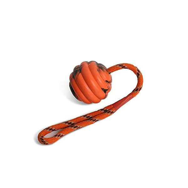 XPangle Dog Training Ball on a Rope – Durable Natural Solid Dog Ball Toy Rubber Exercise and Reward Tool – Medium Size… Click on image for further info. 2