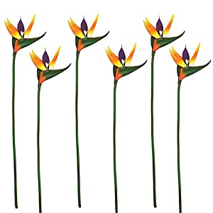 "6 Pieces of 25"" Bird of Paradise - Latex Silk Flower Bouquets Tropical Flower Bouquet 3"