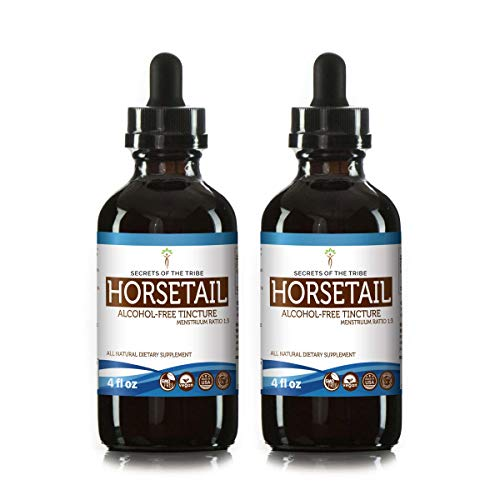 Horsetail Alcohol-Free Tincture Extract, Organic Horsetail (Equisetum arvense) Dried Herb Tincture Supplement (2x4 fl oz)