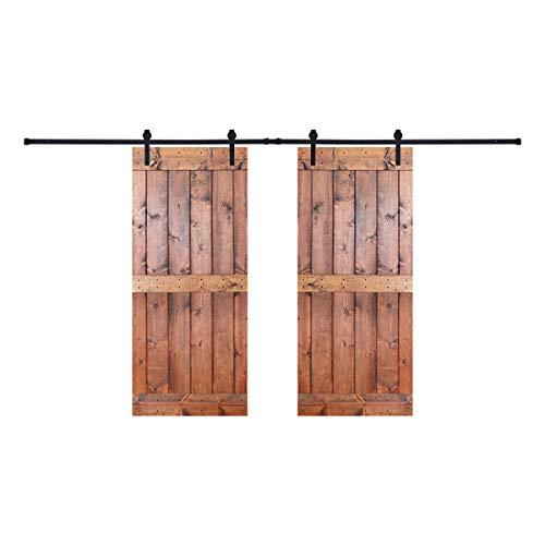 Paneled Wood Painted Double Barn Door DMB Series (Set of 2)