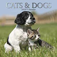 Cats & Dogs: 2020 Square Wall Calendar