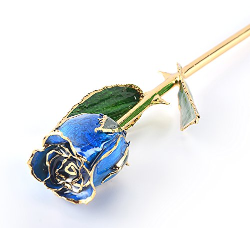 M Dream Long Stem Trimmed 24K Real Rose Dipped in Gold Blue 11 Inches Set of 1,Best Gift for Her, Women, Girlfriends, Wife, Girl, Valentine's Day, Mother's Day, Anniversary, Birthday, Wedding by M Dream (Image #1)