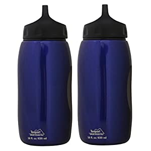 Texsport 28-Ounce Wide Mouth Stainless Steel Beverage Bottle (2-Pack, Blue)