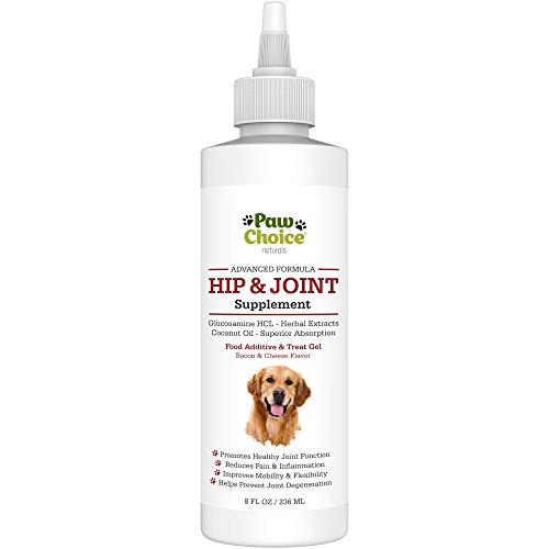 Advanced Dog Glucosamine Hip and Joint Supplement - Best for Healthy Joints, Mobility, Pain Relief & Arthritis Care - Faster Absorbing Extra Strength Gel + Beneficial Natural Extracts, USA Made