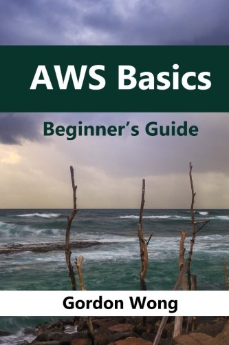 AWS Basics: Beginners Guide