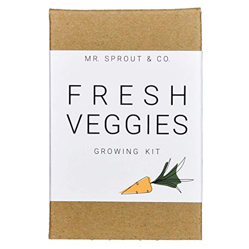 Indoor Garden Kit with Vegetable Seeds for Planting Home Garden - Seed Starter Kit In Kids Gardening Set | Plant Broccoli Carrot Tomato Zucchini To Grow Sprouts | Germination Kit Tools  - By Mr Sprout (Tomato Kit Starter)