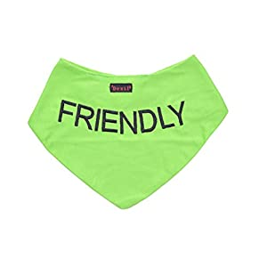FRIENDLY Green Dog Bandana quality personalised embroidered message neck scarf fashion accessory Prevents accidents by warning others of your dog in advance