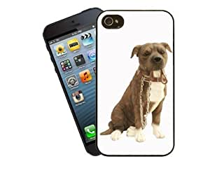 Eclipse Gift Ideas Staffordshire Bull Terrier Phone Case, Design 14 - For Apple iPhone 5 / 5s - Cover